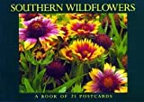 Southern Wildflowers