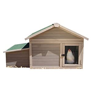 precision pet products urban modular chicken