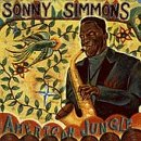 American Jungle by Sonny Simmons