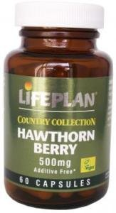 Lifeplan Hawthorn 500mg 60 Capsules Herbs & Plants Well Being - Size: 60 Capsules