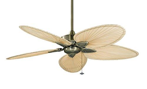 Fanimation Fp7500Ab-220 Windpointe 220-Volt Ceiling Fan, Antique Brass front-12134