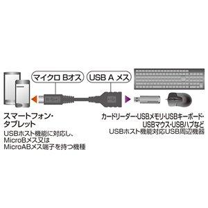 SANWA SUPPLY USBホスト変換アダプタケーブル(MicroBオス-Aメス) 10cm AD-USB18