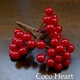 ~Coco Heart~ X'mas マットグラスベリー 36本セット     (クリスマス・リース・プリザ・ドライフラワー)