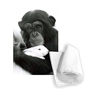 Judy the Chimpanzee caring for a rabbit in.. - Tea Towel 100% Cotton - Art247 - Tea Towel - 46x70cm