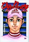 ひかりの空 29 (ヤングサンデーコミックス)