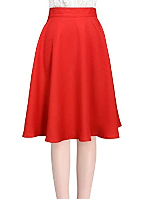 Allegra K Ladies Knee Length Hidden Back Zipper Casual Full Skirt