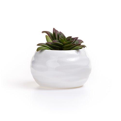 t4u-95-cm-in-ceramica-vaso-forma-dei-denti-sucuulent-bianco-cactus-vaso-vaso-da-fiori-vaso-contenito