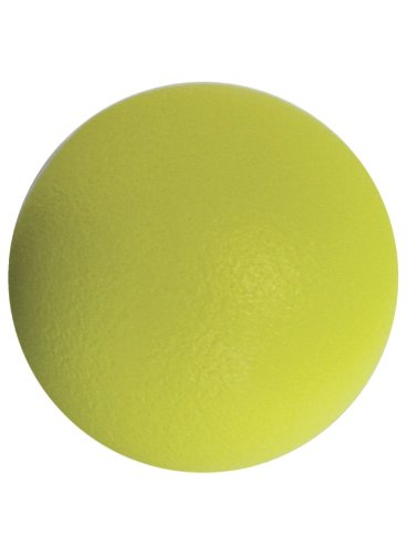 "American Educational Products 6"" Foam Ball with Coating"