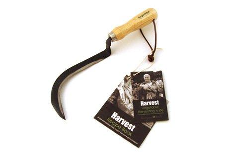 Burgon & Ball GHV/VEGKNIFE Vegetable Harvesting Knife