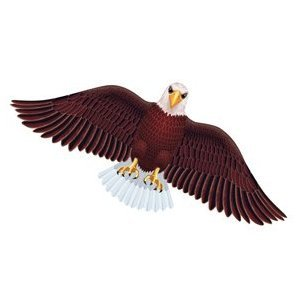 Wildlife American Bald Eagle Bird Wing Flapper Kite-55