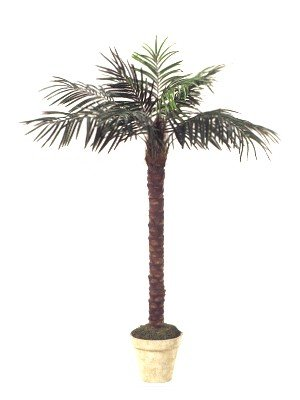7' Artificial Phoenix Coconut Palm Tree with BENDABLE Trunk