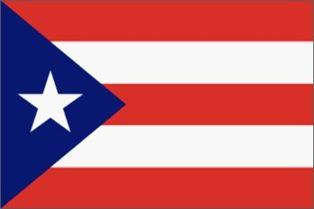 Buy Puerto Rico Flag Polyester 2 ft. x 3 ft.