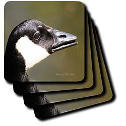Canada Goose - Bird Photography - Set Of 4 Ceramic Tile Coasters