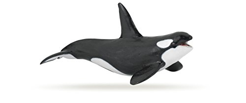 Papo-Marine-Life-Figure-Killer-Whale