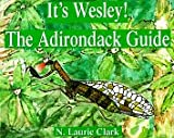 It's Wesley! the Adirondack Guide: The Adirondack Guide