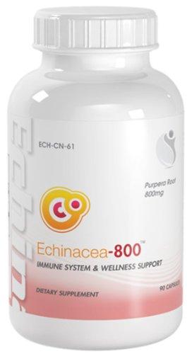 BioNutricals UK Echinacea-800 Immune System & Welness Support Echinacea 800mg 90 Capsules 1 Bottle