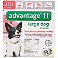 Advantage II for Dogs (21 to 55 lbs- 4 Pack)