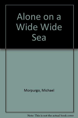Alone on a Wide Wide Sea PDF