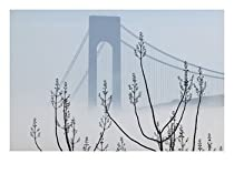 Verrazano-Narrows Bridge in Morning Fog, Staten Island, New York