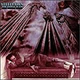 The Royal Scam by STEELY DAN [Music CD]