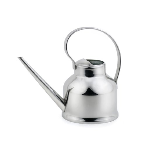 Small Indoor Stainless Steel Watering Can Fine