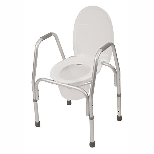 Raised Toilet Seat w/ Safety Frame (Three-in-One) Bedside Commode ...