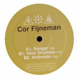 Cor Fijneman DJ Cor Fijneman Feat. Anita Kelsey Healing