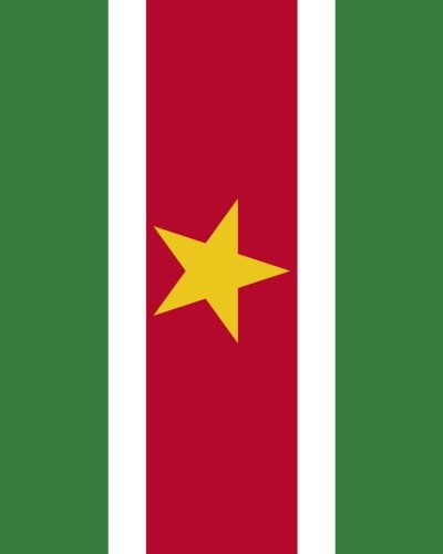 Flag of Suriname Notebook: College Ruled Writer's Notebook for School, the Office, or Home! (8 x 10 inches, 120 pages)
