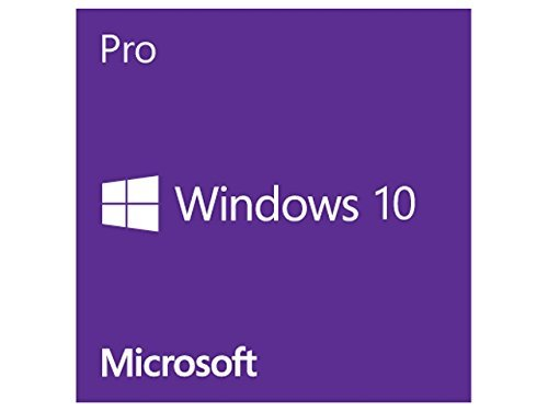 windows-10-professional-esd