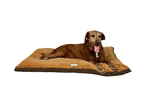 Armarkat-Pet-Bed-w-Waterproof-Lining-Removal-Color-Non-Skid-Base