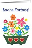 Good Luck Card, Italian Greeting - Flower Power Card