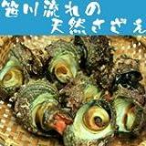 【新潟県産】天然さざえ10個セット