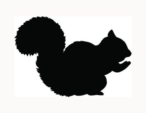 squirrel-sticker-car-window-decal-cute-girl-love-pet-animal-acorn-nuts-tree-fun-die-cut-vinyl-decal-
