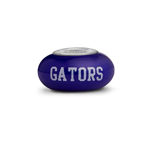 Florida Gators Small Glass Bead Fits All Beaded Bracelets