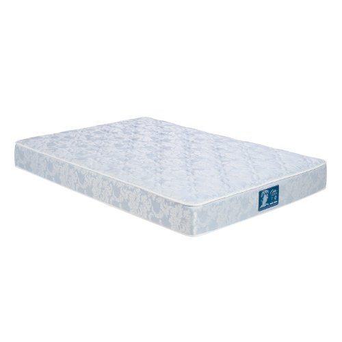 Where To Buy Wolf Sleep Accents Orthopedic Deluxe Firm Mattress Queen Blue Sergio C Flippoer