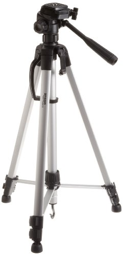 AmazonBasics 60-Inch Lightweight Tripod  Bag