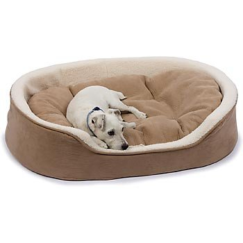 Petco Oval Tan and Cream Lounger Dog Bed