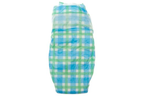 The Honest Company Diaper (Blue Gingham, 1 S)