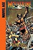 The Last Knights of Wundagore (Wolverine: First Class)