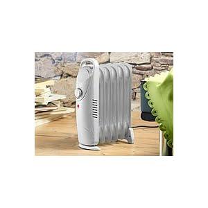 sichler mobile 500 watt elektroheizung mit l radiator. Black Bedroom Furniture Sets. Home Design Ideas