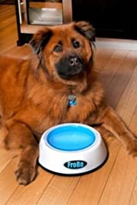FROBO FB 1/24 Cooling Pet Bowl from FROBO LLC