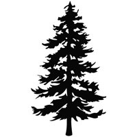 Amazon.com - Tree Evergreen - Plant Decal Vinyl Car Wall ...
