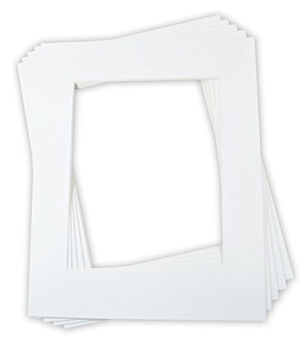 Golden State Art, Pack of 5, 16x20 Off-White Picture Mats Mattes, 8-ply, with Off-white Core Bevel Cut for 11x14 Photo + Backing + Bags (Cheap Picture Frames 16x20 compare prices)