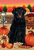 Black Labrador Retriever by Tomoyo Pitcher, Autumn Themed Dog Breed Flags 28 x 40