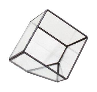 スパイス ガラステラリウム キューブ S GFGY4011