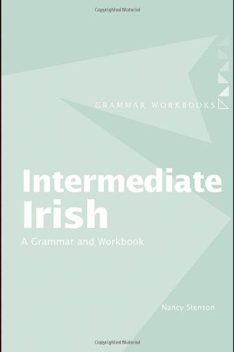 Intermediate Irish: A Grammar and Workbook (Grammar Workbooks)