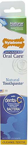 Nylabone Advanced Oral Care 2.5oz Peanut Flavored Natural Dog Toothpaste (Pawtastic Pet Supplies compare prices)