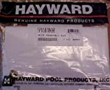 Hayward Automatic Skimmers Replacement Parts Weir Assembly w/Bumper Pad (for 1070 Series) SPX1070KHR