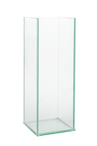 Royal Imports 10 Rectangular Clear Glass Vase 5x5x10 Square