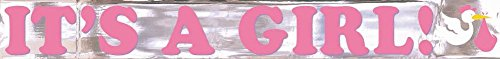 It's a Girl Metallic Banner 15ft - 1